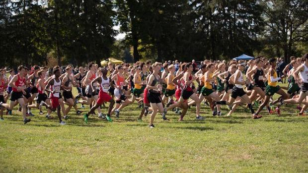 Who Was Michigan's Most Improved Boys XC Runners?