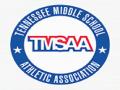 TMSAA State  Championships
