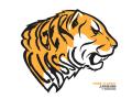 GTC Tiger Classic