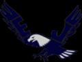 Jr. Eagle/Steve Collins MS Invitational