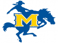 McNeese Indoor II