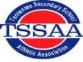 TSSAA AAA Section 4 Championships