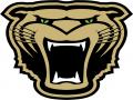 Bearcat 2-Mile