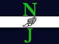 Freshman/JV NJ State Meet