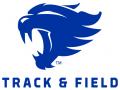 Wildcat Track Classic