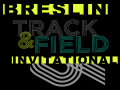 Mount Carmel Area Breslin Invitational