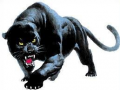 The Panther Challenge