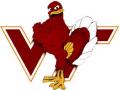 Virginia Tech Challenge