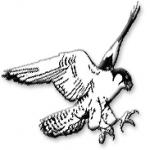 Goodman WI, USA